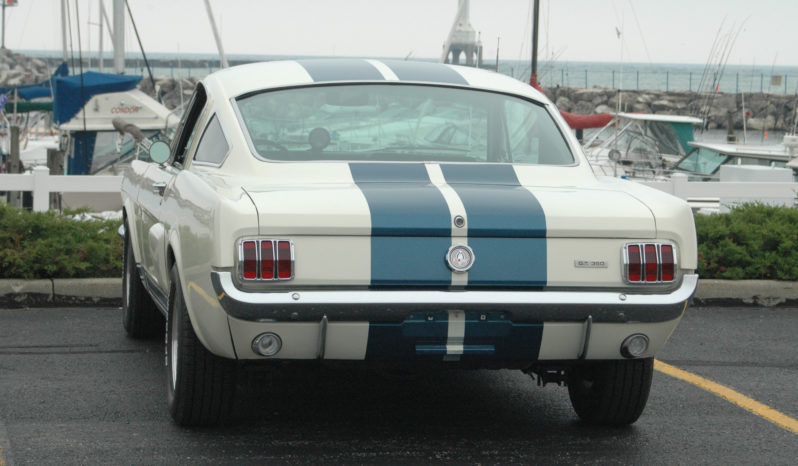 1966 Ford GT 350 Tribute full