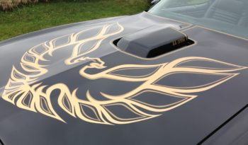 1978 Pontiac Trans Am full